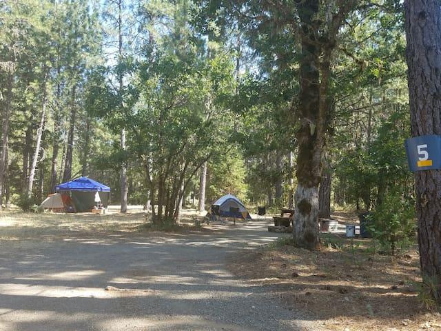 Tent Campsite (T5)