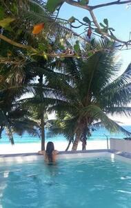RoseNest beach front villa w/ an infinity pool - Arecibo - Haus