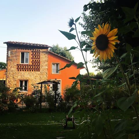 Villa Amoroni2 rustico  toscano indipendente