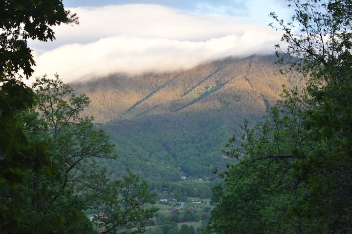 Sleep in the Clouds Mountain Cabin - NO FEES! - Sevierville - Skáli
