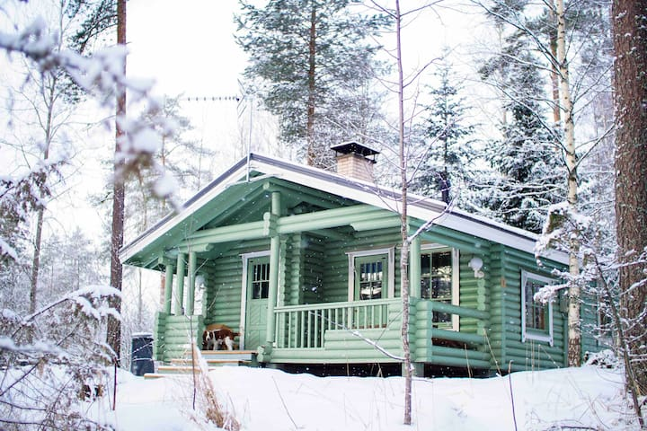 Ilves cabin with sauna in family Holiday Village
