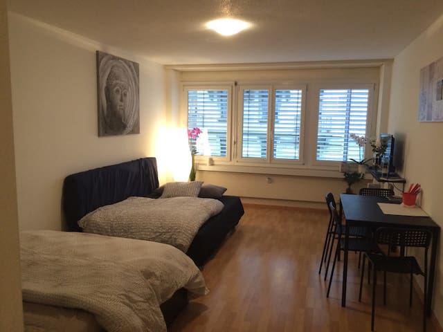 Apartment in the heart of lucern - Luzern - Appartement