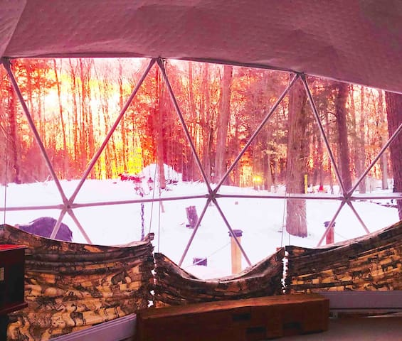 Starview tent in the forest