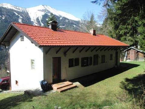 Beautiful ski and mountain cottage - great view