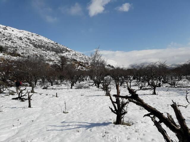 Gonen mountains view-נושק לחרמון גולן ולטבע החורפי
