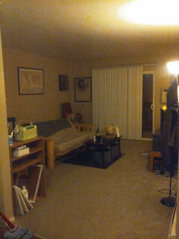 Cozy 1 bedroom in colorado springs. - Colorado Springs - Flat