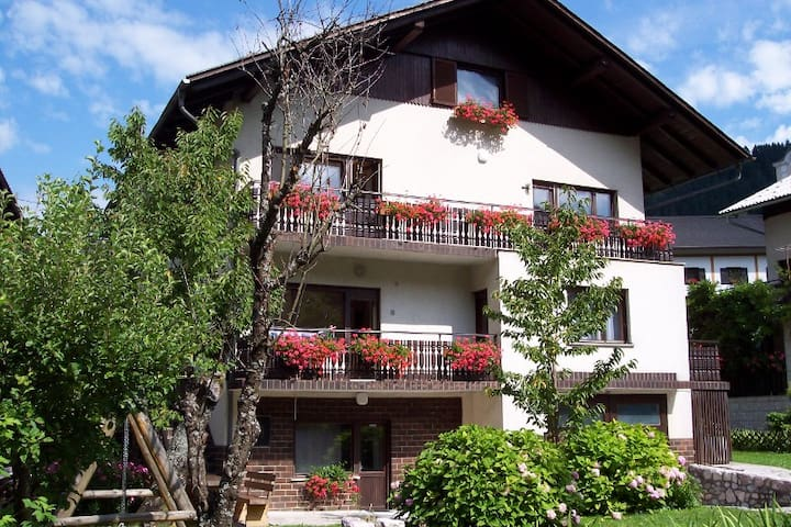 Spacious holiday apartment Luce 112 - Luče - Daire
