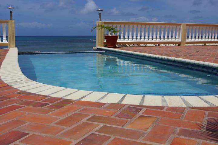 Laborie Beach House with Infinity Pool - Laborie - Apartamento