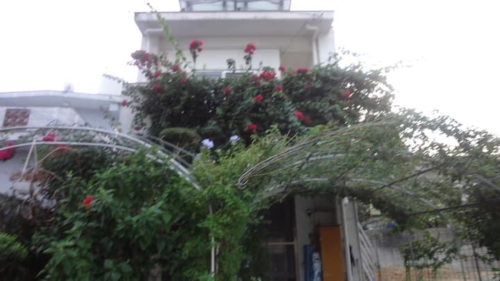 緑に囲まれた、1件家、快適空間、安い、 2階の101号室です