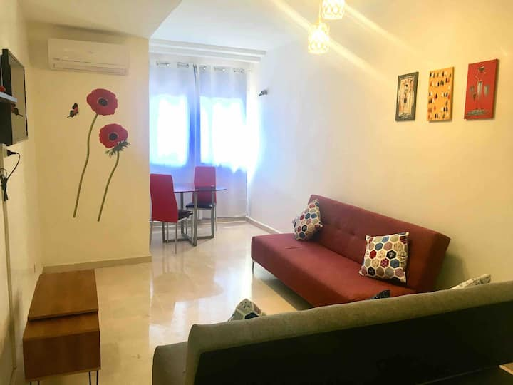 Appartement moderne au centre wifi/AC/Tv/parking