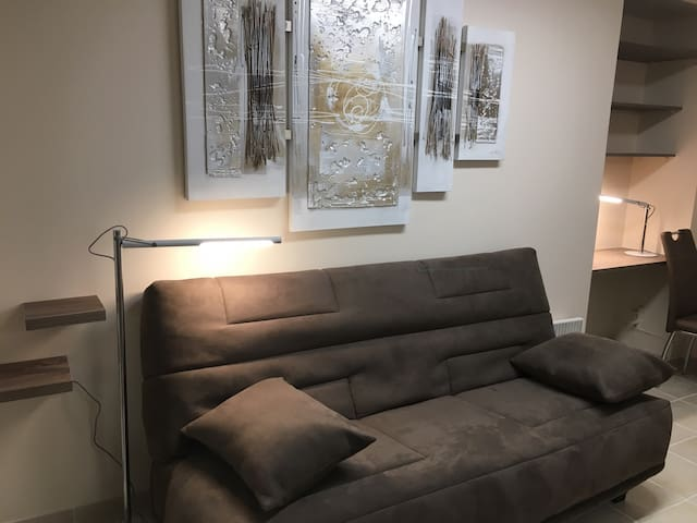 Comfortable couch/ bed, lamp for reading, WIFI  Couch opens and makes 2 place bed