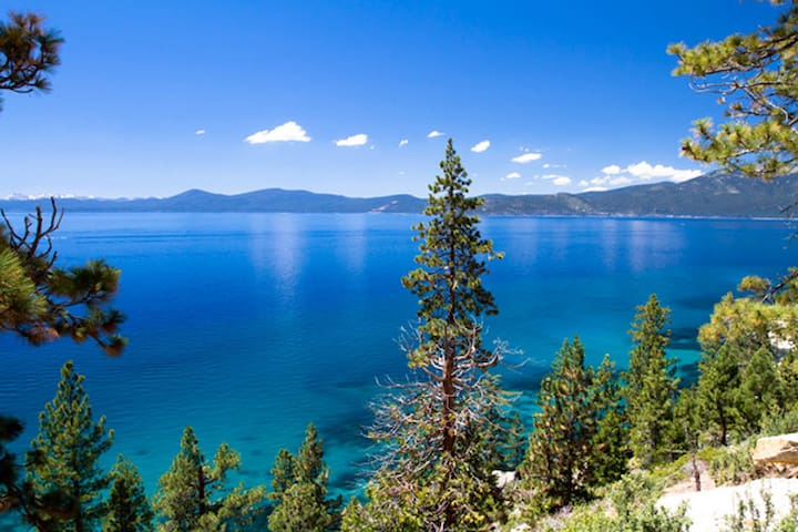 The Tahoe Destination - Entire Home