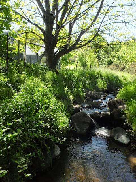 Kowhai Cabin, Little River: Be Nurtured by Nature