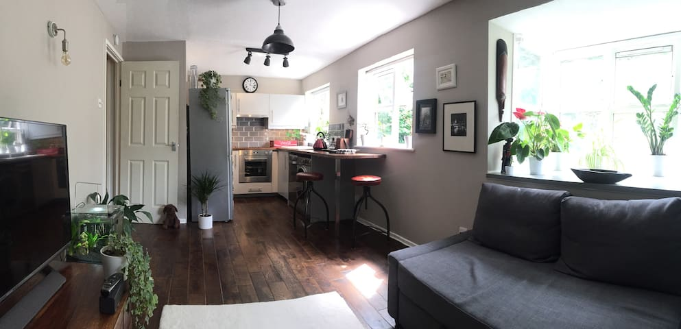 Peaceful apartment in Muswell Hill sleeps up to 4
