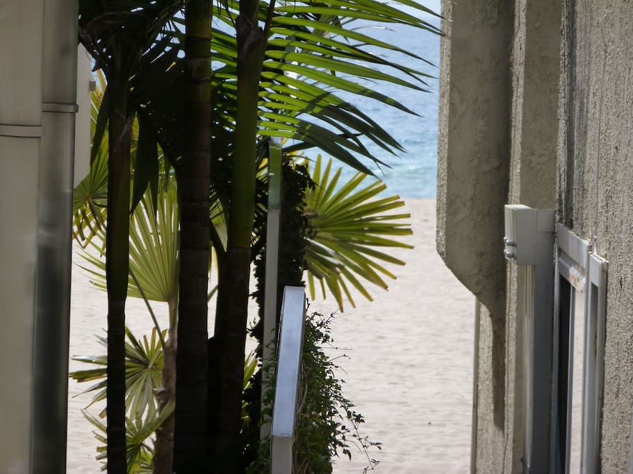 View from the Master Bedroom with Peek-a-boo Pacific view.  100 ft. to the boardwalk and sand.