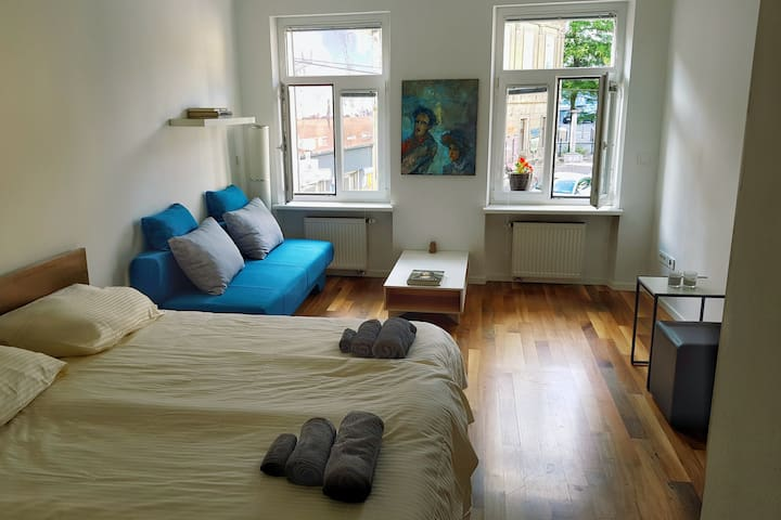 Artistic Apartment in Historical Old Town