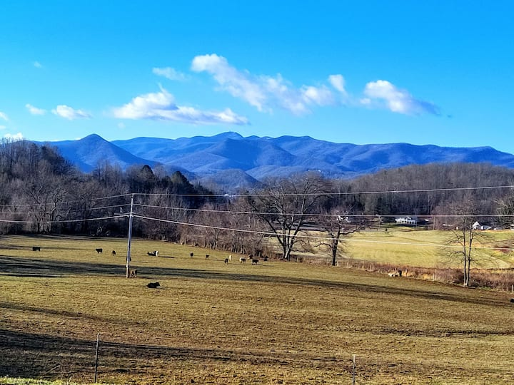 Green Acres meets Lake Chatuge & Brasstown B views