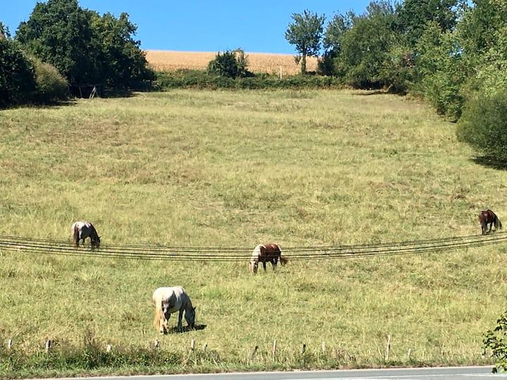 Briscous :le charme de la campagne basque