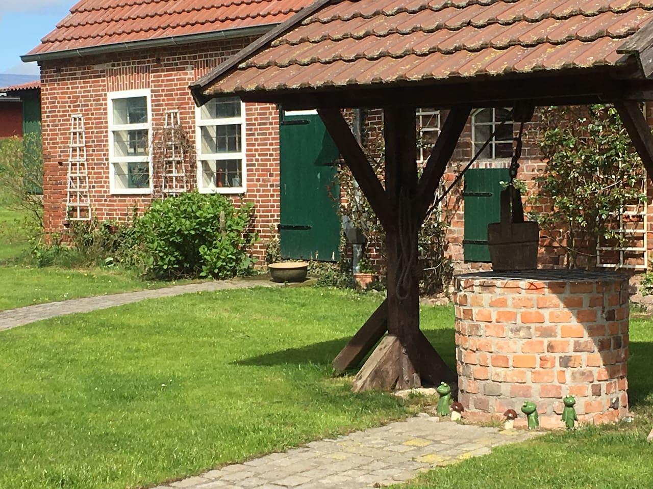 Ausblick in den Hühnerhof