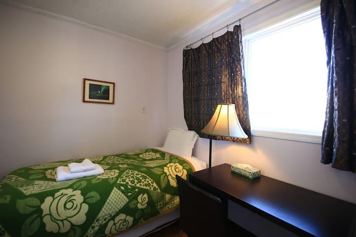 Comfortable Downtown bedroom