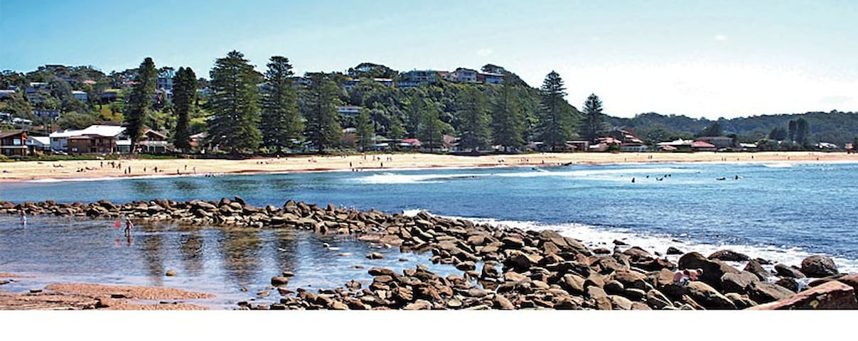 Dardanelle at Avoca Beach