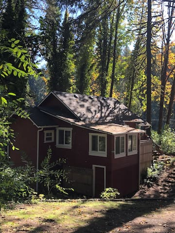 Cozy cabin overlooking Leaburg Lake