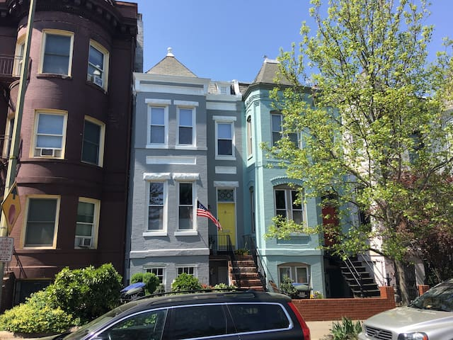 Capitol Hill's perfect location: newly renovated!