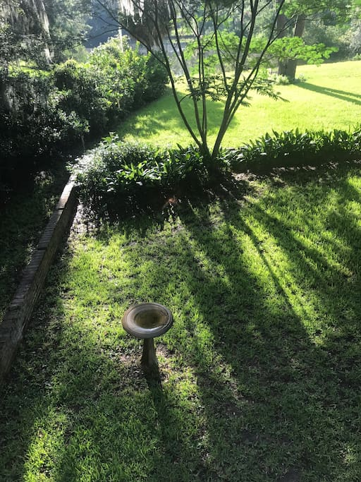 Backyard with view of pond