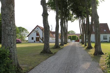 Charming farmhouse with views of Hereford cattle.. - House