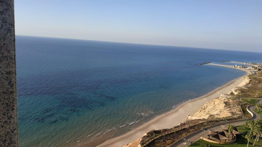 SEA VIEW SUIT
