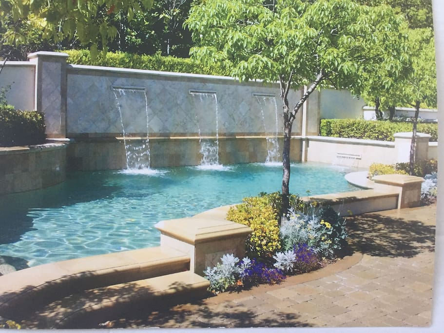 Our private pool and jacuzzi in our backyard that is fenced and with complete privacy.