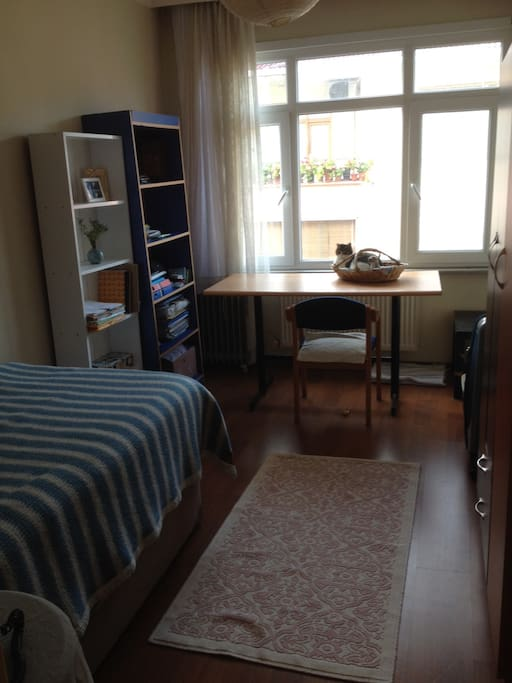 The room is very, spacious and full of sunlight. It has 2 bookcases, a large desk and chair, a wardrobe and drawer. Clean and ready to use.