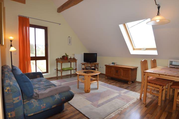 Comfortable Apartment in Meisburg Eifel near Watermill