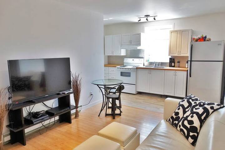 Lovely 2 bedroom apartment near Atwater Market - Montréal - Apartament