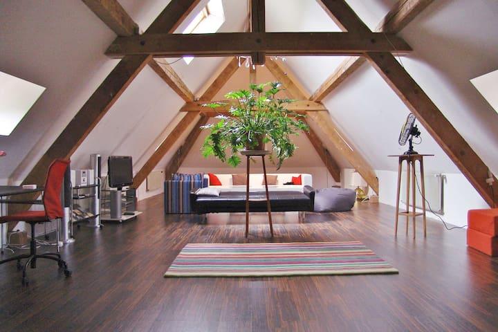 Grosszügige 5 Zimmer Wohnung (167m2)