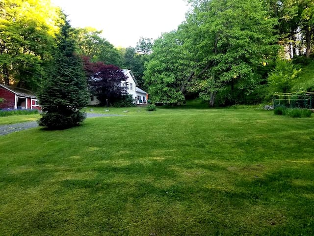 The view from the front lawn...lost of room to roam with the garden to the right!