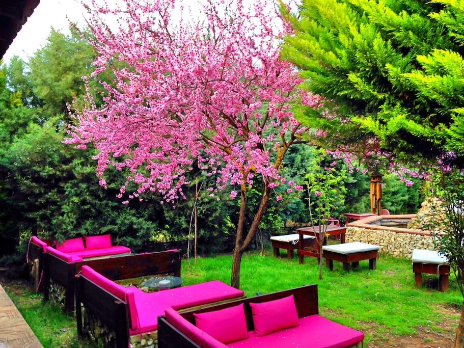 Orta Bahçe Pembe Köşe Oturma Alanı