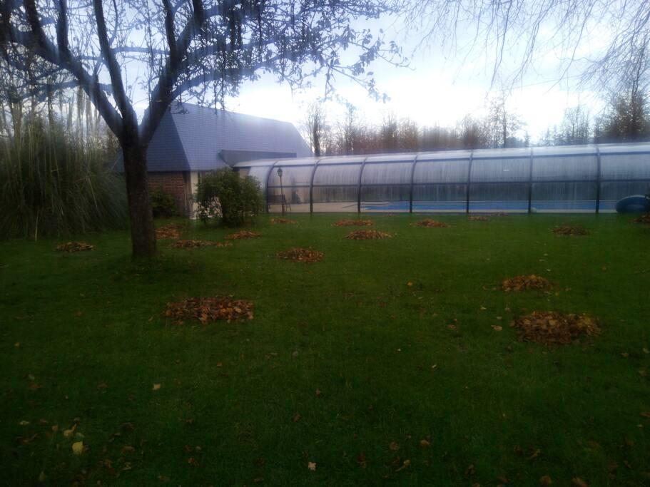 piscine vue de la maison