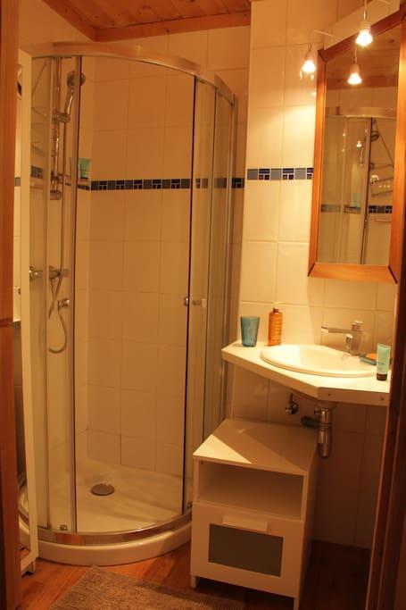 salle de bain,avec grande armoire de rangement,et seche serviettes