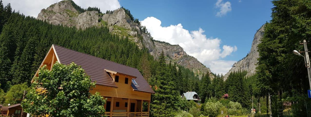Casa Bicăjeanului