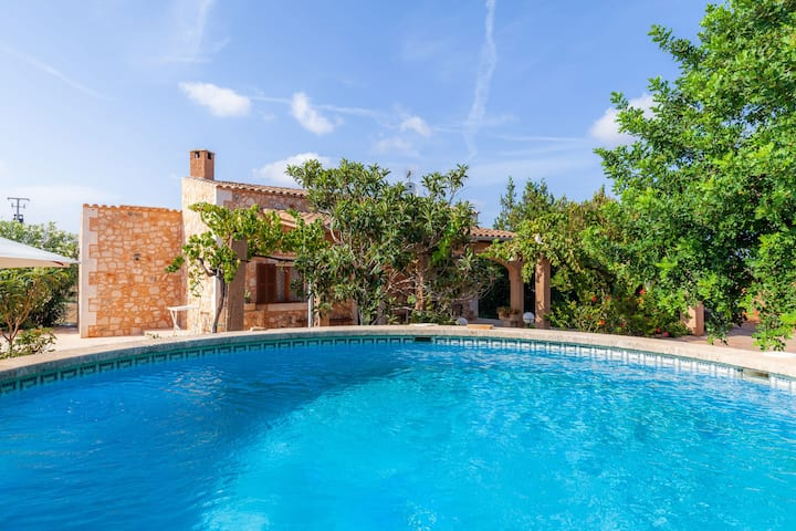 Country house with pool near nature park – Villa Jacoba