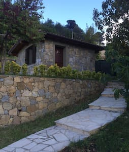 Nice & Cute Guest House with Pool - Camporosso
