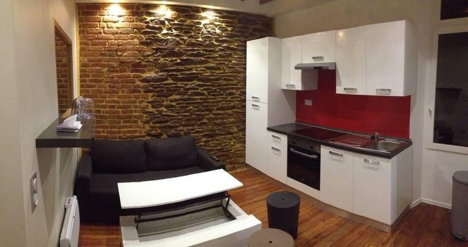 Très bel appartement rénové - Rennes - Apartament