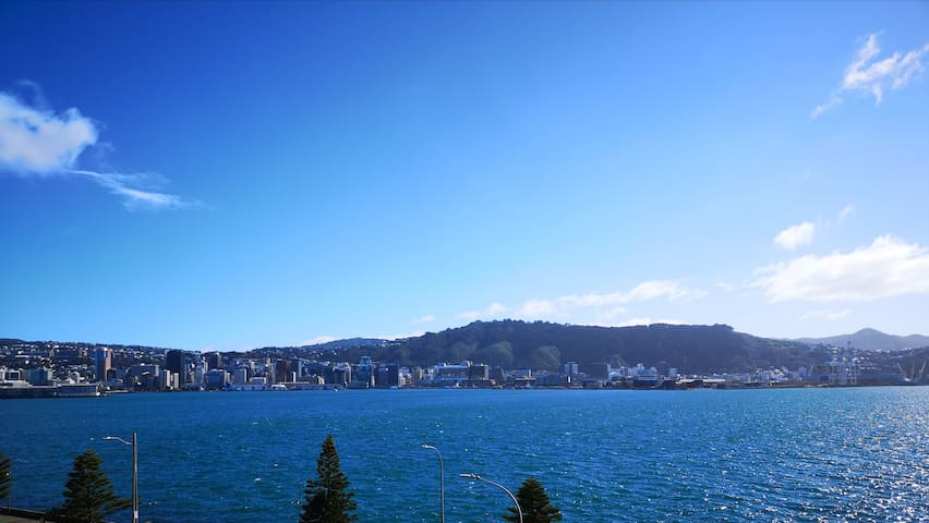 Wellington's beautiful Harbour and Hills spread out before you