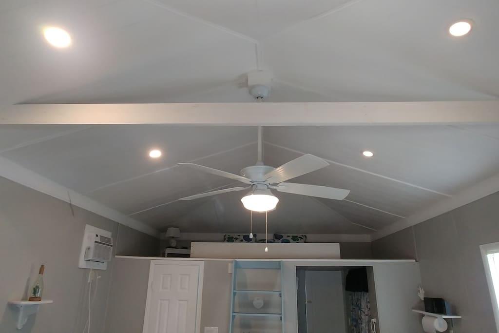 Fan/Ceiling