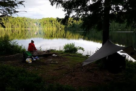 Guided Camping Experience in the forest! - Oslo