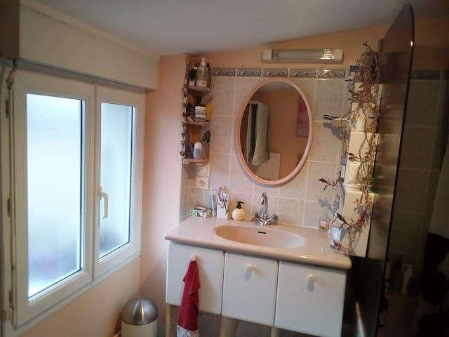 Salle de bains et WC séparés