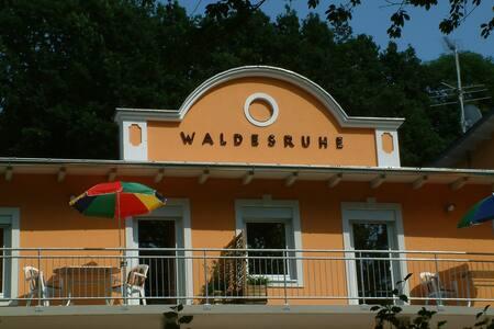 FERIENWOHNUNGEN - Villa Waldesruhe