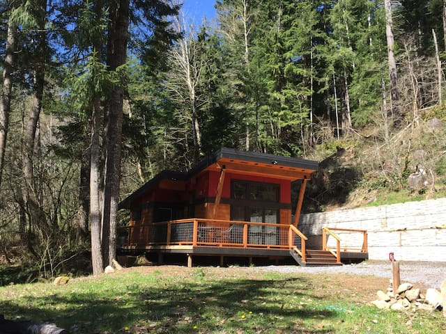 New Modern Cabin Near Mt. Rainier - Ashford - Stuga