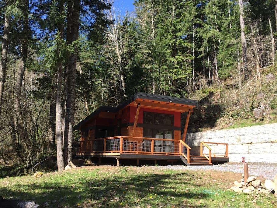 New modern cabin near mt rainier cabins for rent in for Cabins near mt ranier